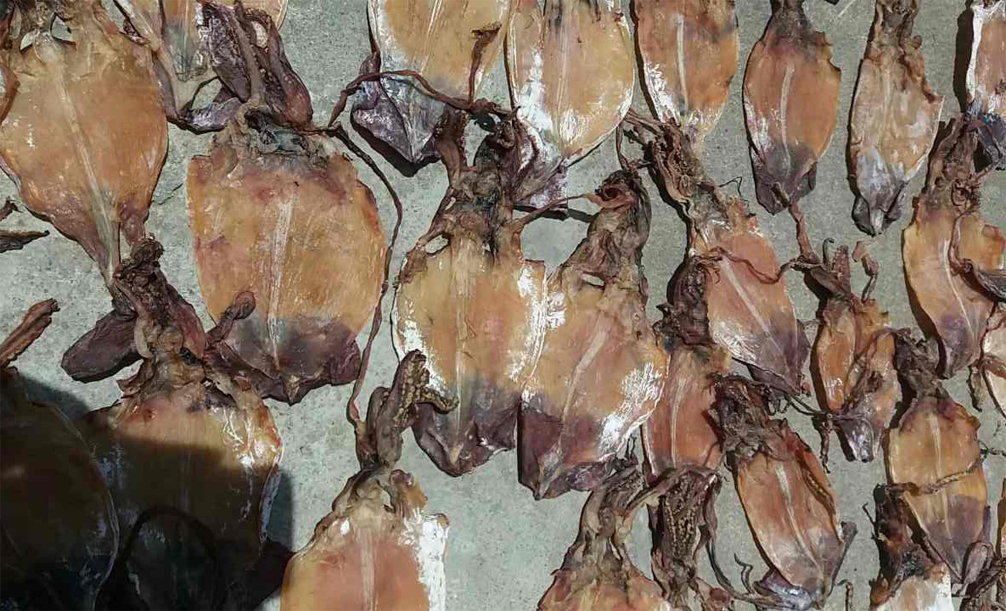 Dried Black Squid Skin less - original vietnam