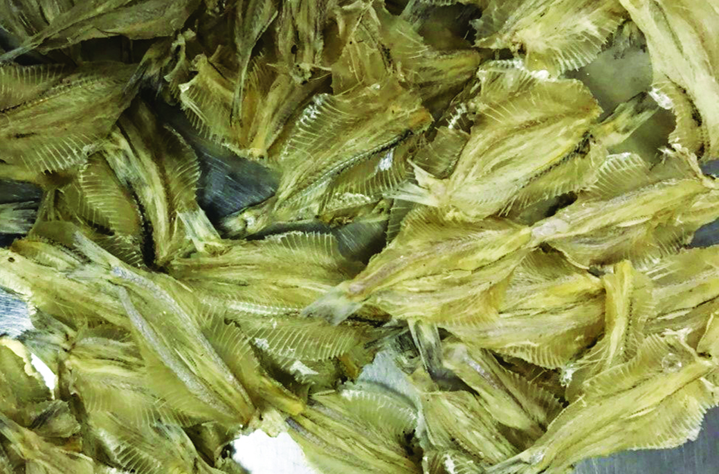 19. Dried Deep Herring
