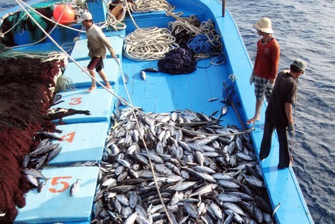 EC recognises Việt Nam's improvements in combating IUU fishing