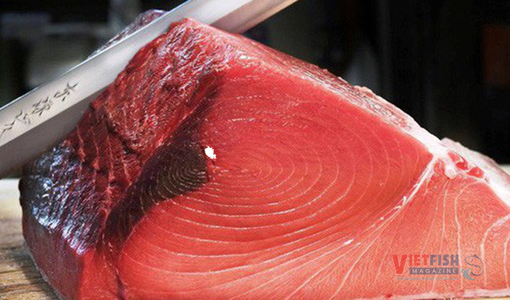 Tuna exports fell after two months of consecutive growth